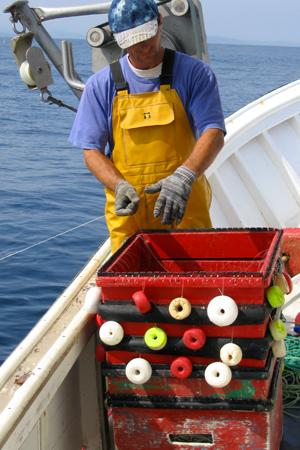 Un pêcheur prépare la ligne