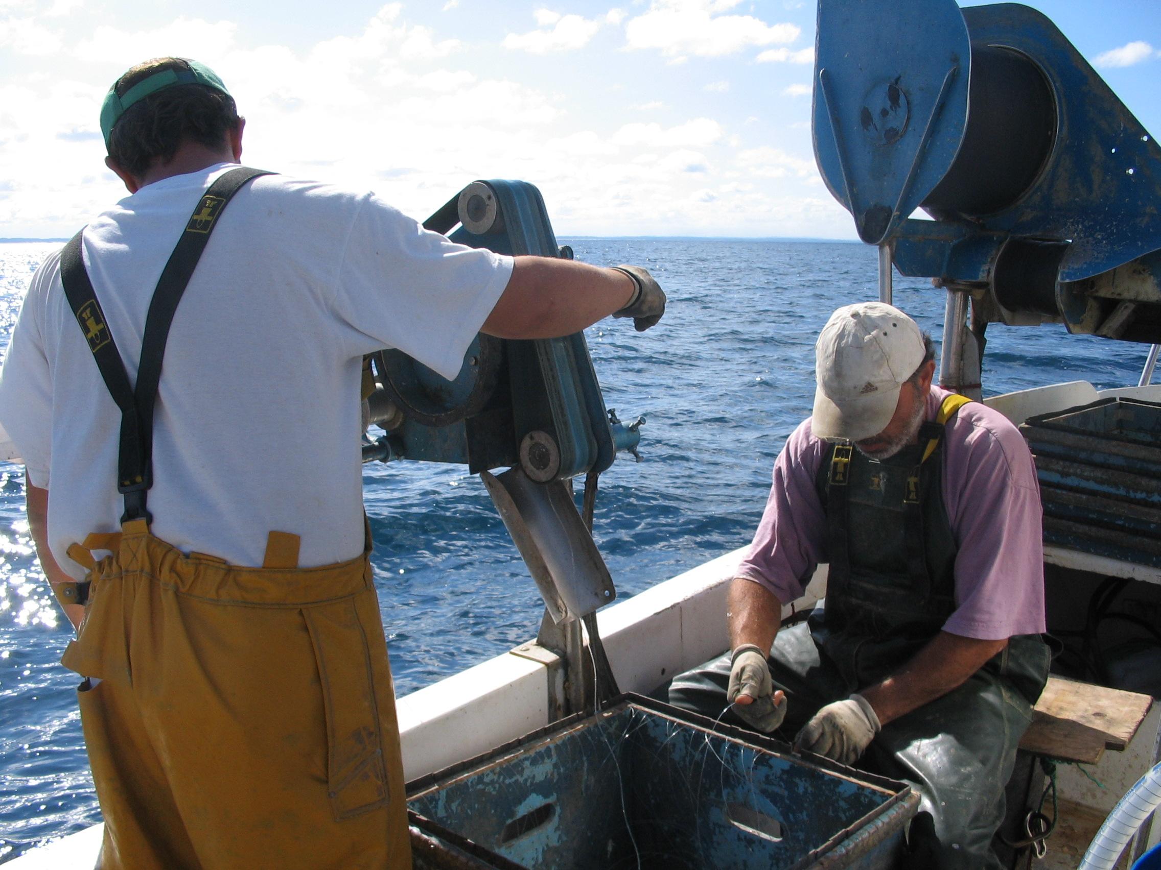 campagne de pêche 2019